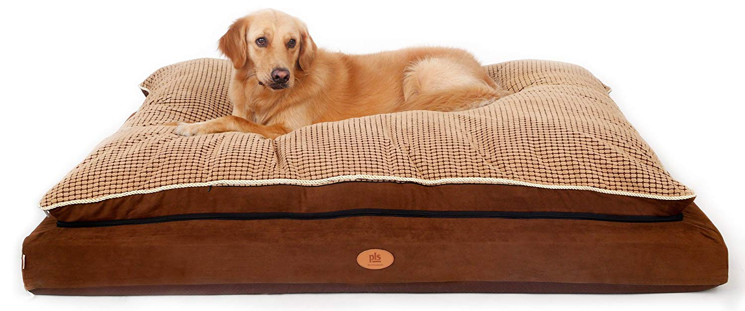 Best Mastiff Dog Beds of [date format='Y'] - Overview of Beds for Large Dogs